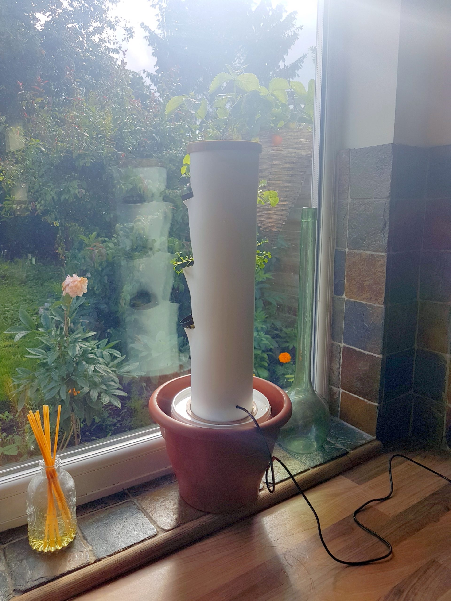 Indoor vertical hydroponic herb garden